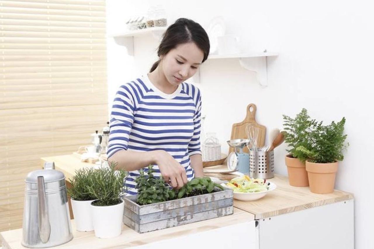 Berkebun di Dapur Sekaligus Sebagai Hiasan